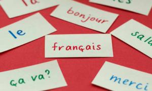 بهترین مرکز آموزش خصوصی زبان فرانسه در کرج